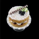 blackberry_sponge